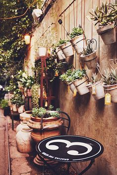 How to hang outdoor potted plants