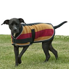Traditional Pattern Dog Coat We've come up with a great traditional pattern blanket for your dog! Luxurious double thick bonded non pilling fleece. This classic Pet Beds, Dog Bed, Large Dogs, Small Dogs, Pet Coats, Dog Coat Pattern, Fleece Dog Coat, Photo Animaliere, Dog Blanket