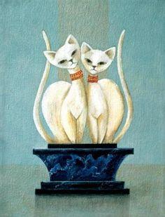 Gato blanco   pinturas  Marcia Stacy