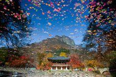 Beakyangsa, Jangseong, South Korea