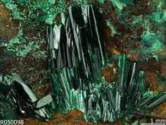 ATACAMITE: Cu2Cl(OH)3, halide, orthorhombic, MOHS 3-3.5, transparent to translucent, specific gravity 3.745-3.776, cleavage: perfect on 010, fair on 101, habit slender prismatic crystals, fibrous, granular to compact, massive, color: bright to dark emerald green to blackish green