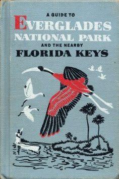 Florida keys on pinterest florida keys the florida keys for Everglades fishing guide