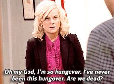 gif mine parks and recreation parks and rec leslie knope ben wyatt