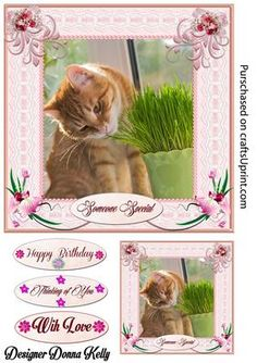 Cat Nip Please Multi use card front on Craftsuprint designed by Donna Kelly - An Adorable tabby cat adorns the center of this pretty pink framed card. Pink Flowers enhance the lace frame. Sheet includes an approx 7x7 card front,large gift tag, and 3 sentiment tags. sentiments read Someone Special, Happy Birthday, Thinking of You,