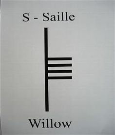 S is for Saille, pronounced sahl-yeh, and is associated with the Willow tree. The Willow is often found near water, and when nourished it wi...