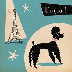 #Bonjour da #LollyStar! ♥ #poodle ♥
