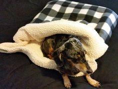 Dog Burrow Bed, Burrow Bag, Dog Bed, Dog Blanket, Dog Sleeping Bag, Dog Snuggle Sack, Dog Burrow Bag by TwoSweetPeasandaBoo on Etsy