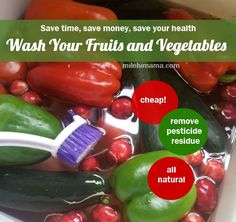 Can't afford organic?  Use vinegar wash for fruits and vegetables to reduce pesticides, germs, and dirt!