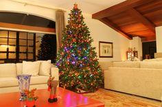 Marília Pessíni. Montagem e Desmontagem de árvore de Natal. http://www.clausprime.com.br