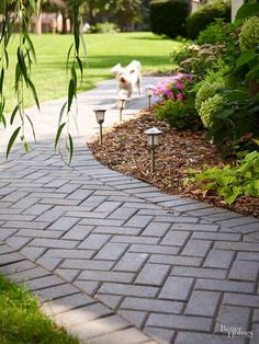 Versatile 4×8-inch Holland brick pavers are an inexpensive solution when you…