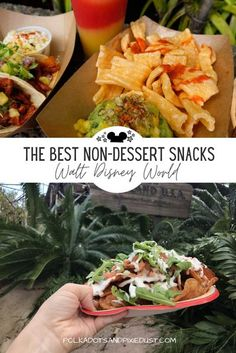 This ever-growing list of The Best Non-Dessert Snacks at Walt Disney World includes nachos, pretzels, dough balls and more from across all 4 Walt Disney World Parks! Perfect to keep blood sugar levels in check and accommodate the 8-15 miles you're walking every time you visit the parks!  #waltdisneyworld #disneyvacation #disneyplanning #disneysnacks #polkadotpixies