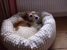 Jessie in a Donut Dog Bed #happycustomer #happydog #dog