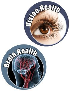 Blackcurrant anthocyanins can help boost brain power and reduce mental fatigue while also offering strong vision support.