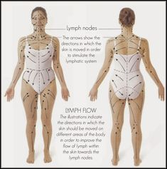 lymphatic drainage, edema, spider veins and varicose veins. This extract of ginger root and ginger oil relieves swelling and pain with its warming and anti Benefits Of Dry Brushing, Dry Brushing Skin, Dry Skin, Varicose Vein Remedy, Varicose Veins, Face Gym, Lymphatic Drainage Massage, Improve Circulation, Lymphatic System