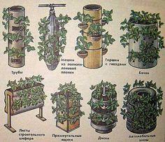 Вертикальное выращивание растений — как сделать вертикальные грядки