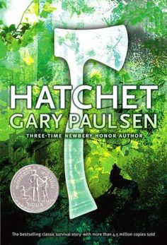 Hatchet! Read this in middle school and I still like it.