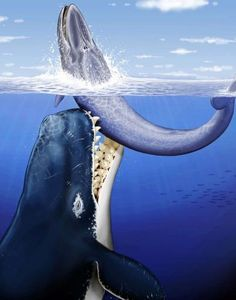 Top 10 Terrifying Prehistoric Sea Monsters - Toptenz.net