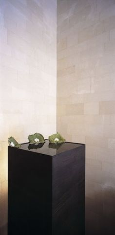 Small water basin at the entrance area of the Giorgio Armani store in London by Claudio Silvestrin.