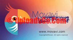 Movavi Photo Editor 3 Activation Key + Crack Free Download, Movavi Photo Editor 3 Serial Key, Movavi Photo Editor 3 Crack, Movavi Photo Editor 3 Patch.