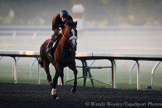 Union Rags with Peter Brette aboard at Keeneland
