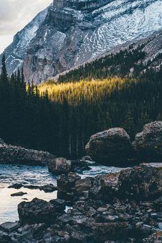 natureac: Nature Blog