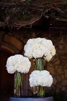 Simple Hydrangea centerpieces. Hydrangea come in lots of colors, and a ribbon around the vase would really jazz it up!