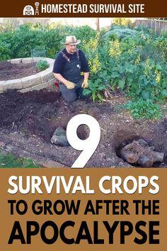 Homestead Survival, Survival Life, Survival Food, Wilderness Survival, Camping Survival, Survival Prepping, Emergency Preparedness, Survival Skills, Urban Survival