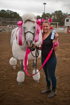 DIY Mickey and Minnie Mouse horse costume for Halloween ...