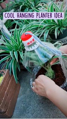 Plastic Planters, Hanging Planters, Plastic Craft, Plastic Bottles, Garden Crafts, Garden Projects, Garden Art, Garden Ideas, Vegetable Planters