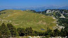 Plateau en Chartreuse