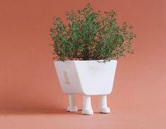 urban legs gardening Crooked Smile, Colossal Art, Modern Ceramics, Design Awards, Minimalism, Contemporary Art, Planter Pots, Workshop, Sculpture