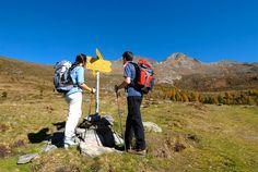 Das Österreichische Wandergütesiegel ist eine Auszeichnung für Feriengebiete, die sich durch besondere Anstrengungen in die Herzen berghungriger Gäste katapultiert haben. Der damit verbundene Qualifizierungsprozess ist streng und nur wirklichen Qualitätsangeboten vorbehalten. Newsreader, Das Hotel, Mountains, Nature, Travel, Communities Unit, Family Vacations, Alps, Hiking
