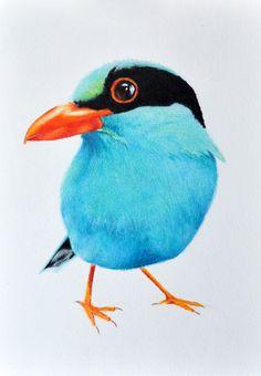 Exotic Blue Bird Original Colored Pencil drawing by PrismaticArt, $60.00