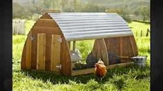 https://guideimg.alibaba.com/images/shop/100/12/18/2/chicken-coops-and-hen-houses-build-a-chicken-coop-or-hen-house-thats-right-for-your-flock_1306642.jpg