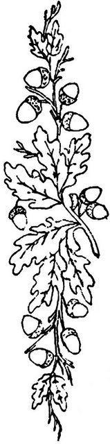 1886 Ingalls Oak Branch by jeninemd, via Flickr: