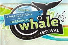 What's On In Hermanus Events & Entertainment Guide Hermanus. Find things to do for the whole family in Hermanus. All the shows, movies, bands, sports events, expos in Hermanus. Festival Logo, Art Festival, Activities In Cape Town, Salisbury School, Global Awareness, 24 September, Festivals Around The World, Guest Speakers, Whale Watching