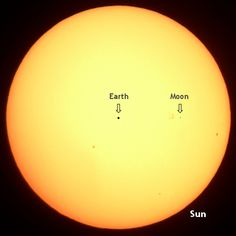 The orbital distance of the Earth and moon overlaid onto the sun, all to scale.