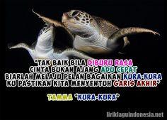 tak baik bila diburu rasa cinta bukan ajang adu cepat biarlah melaju pelan bagaikan kura-kura ku pastikan kita menyentuh garis akhir  https://liriklaguindonesia.net/tamma-kura-kura.htm  #tamma #kurakura