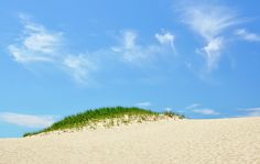 Wispy clouds paint the sky in this solitary dune photograph. Summertime on the Cape at the Cape Cod National Seashore in Provincetown, Massachusetts, MA 02657. Relax, soak up the sun, and explore... beach life is good. #capecod   Buy and purchase original / unique prints and photographic art / artwork online by Luke Moore.