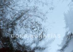 """""""Espiral"""" Fotografía tomada en el parque Eva Perón de Madrid, España. La puedes encontrar en Etsy."""