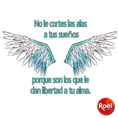 No le cortes las alas a tus sueños por que son los que le dan libertad a tu alma.  #Frasedeldía
