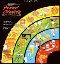 """This pin is about the food guide I thought this would be important to show everyone """" what they eat"""" and what product of food go where. I am sure you have seen this food guide once or twice in your lifetime."""