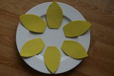 Daffodils for St David's Day - The Imagination Tree
