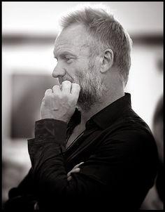 """Sting"" by Sally Davies NYC    ©trifi productions"