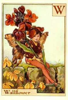 Alphabet Fairies:  Wallflower by Cicely Mary Barker