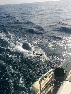 sailing and fishing!!