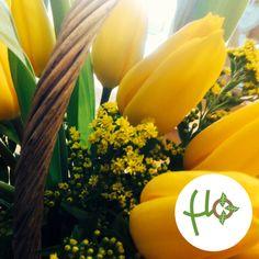 Un cestino pieno di tulipani gialli e solidago!