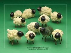who doesn't need to make a cauliflower sheep?
