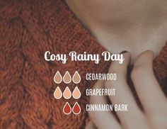 Cozy day EO blend