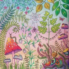 August 2015 Using Only Polychromos See More Left Page Johannabasford Enchantedforest Johannabasfordenchantedforest Marcoraffinepencils